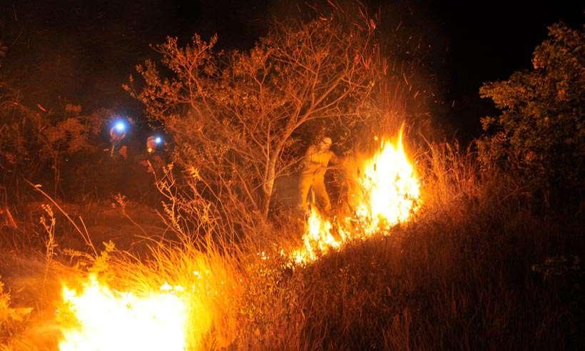 Focos de calor aumentam 80% em Minas antes do mês mais crítico para incêndios