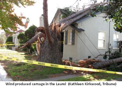 Windy Destruction