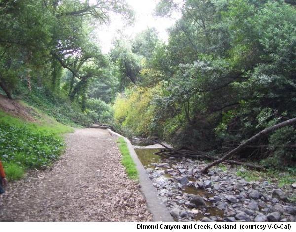 Dimond Creek