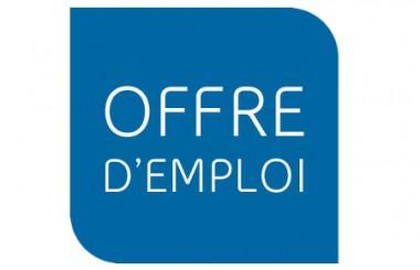 logo offres item Les offres demploi