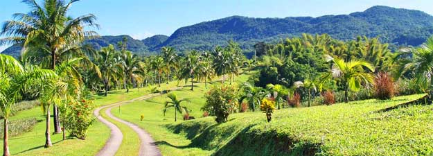 Attractions in Montego Bay