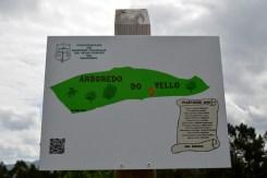 Arboreda do vello: O traballo de recuperación do monte tamén contempla a toponimia tradicional