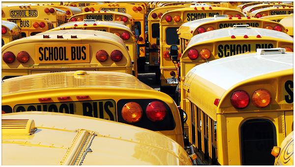 bus-scolaires