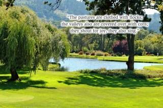 xp3-dot-us_DSC_7684 Golf course, shout for joy
