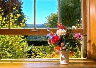 Window Elinore Place