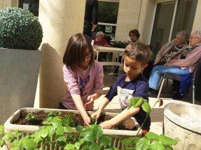 Entraide des primaires à l'école Montessori Internationale de Bordeaux-Gradignan