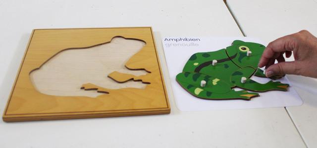 formation montessori culture