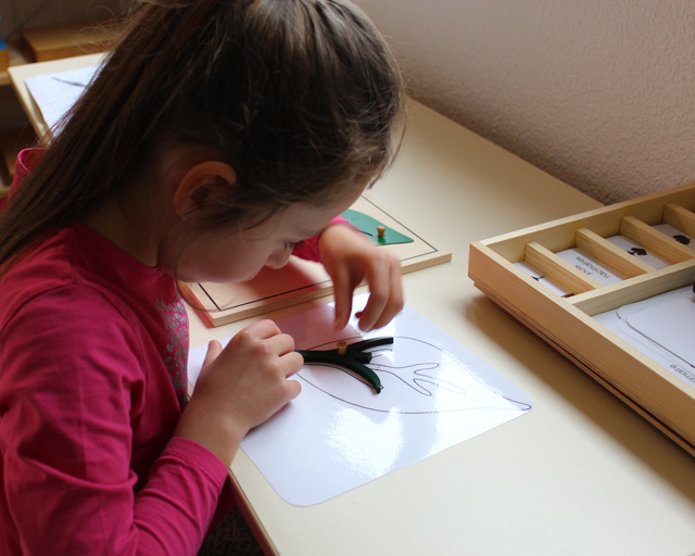 montessori feuille