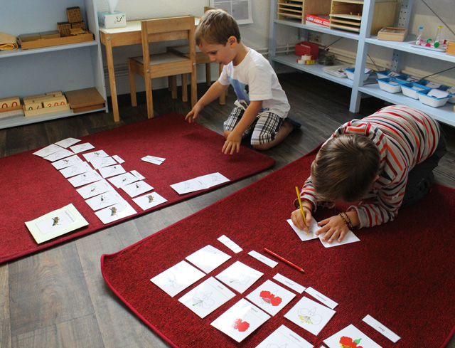 montessori nomenclature 8