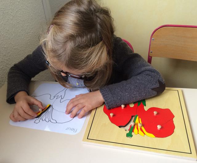 puzzle montessori fleur