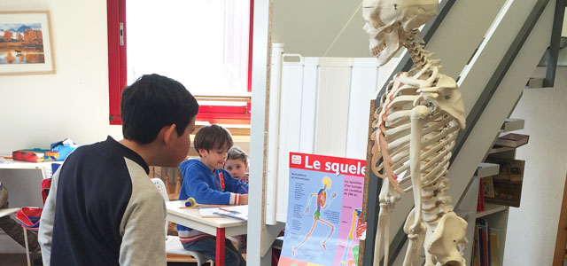 étude corps montessori international bordeaux