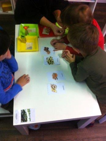 atelier montessori bordeaux 1