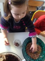 montessori international bordeaux truffes chocolat 15