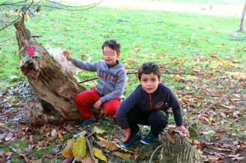 montessori international bordeaux gardignan sortie land art 20