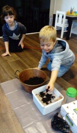 montessori international bordeaux champignons 22