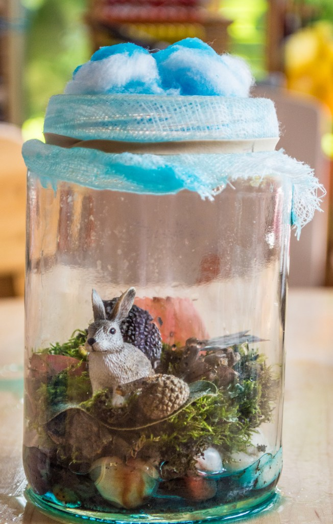 DIY-terrarium-water-cycle