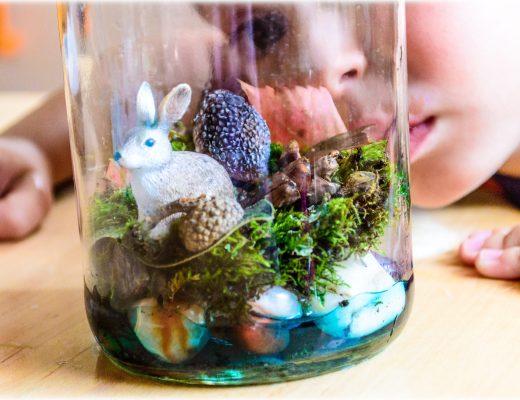 DIY-terrarium-STEM-science-in-a-bottle