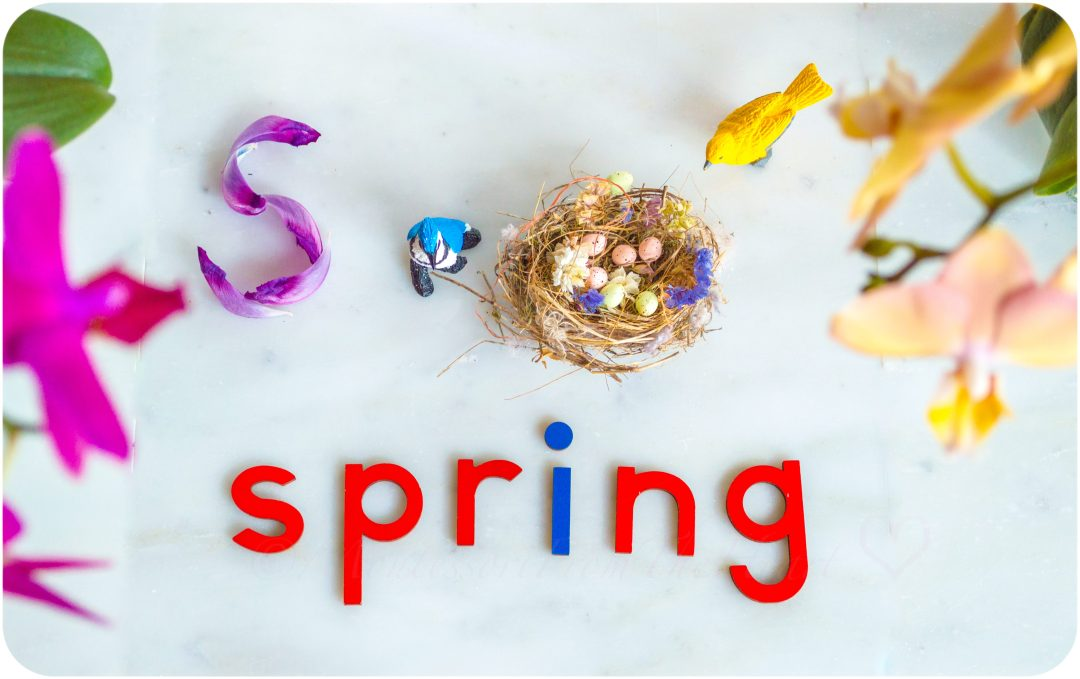 Spring-Inspired-Unit-Study-Kids-Activities