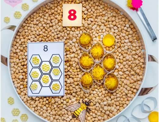 Beehive-Counting-Cards-Chickpeas-Kmart-Play-Tray