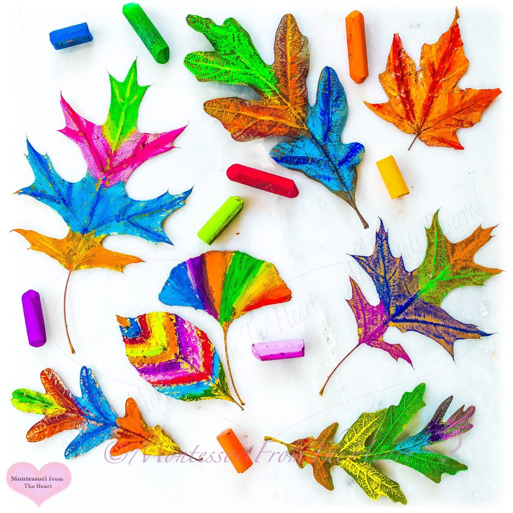 Leaf-Coloring-Oil-Pastel
