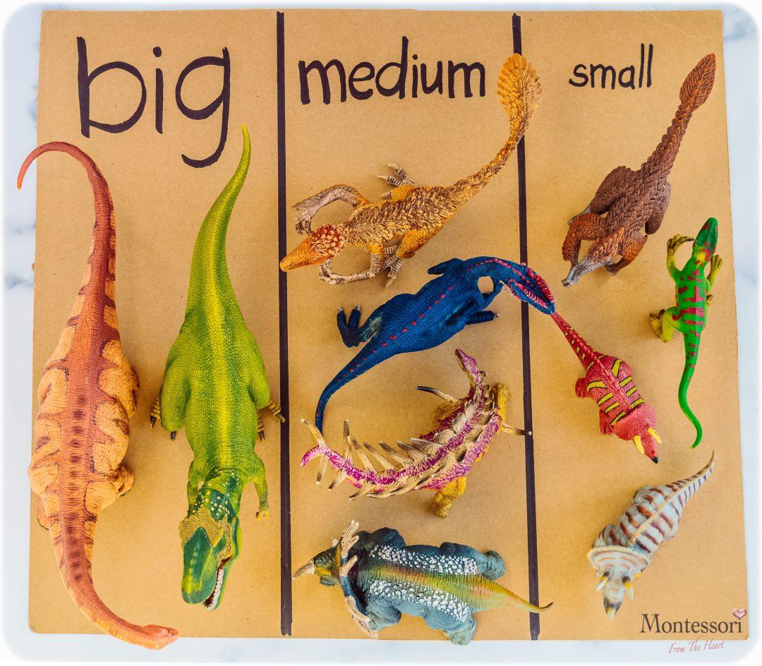 Dino-Schleich-BIG_MEDIUM_SMALL-SORT-Kids Activity