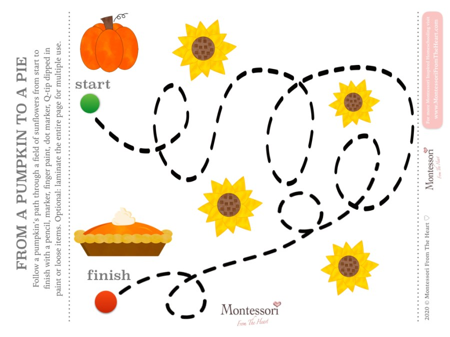 FOLLOW THE LINE| FROM PUMPKIN TO A PIE LOGIC | THANKSGIVING Montessori KIDS ACTIVITY PACK