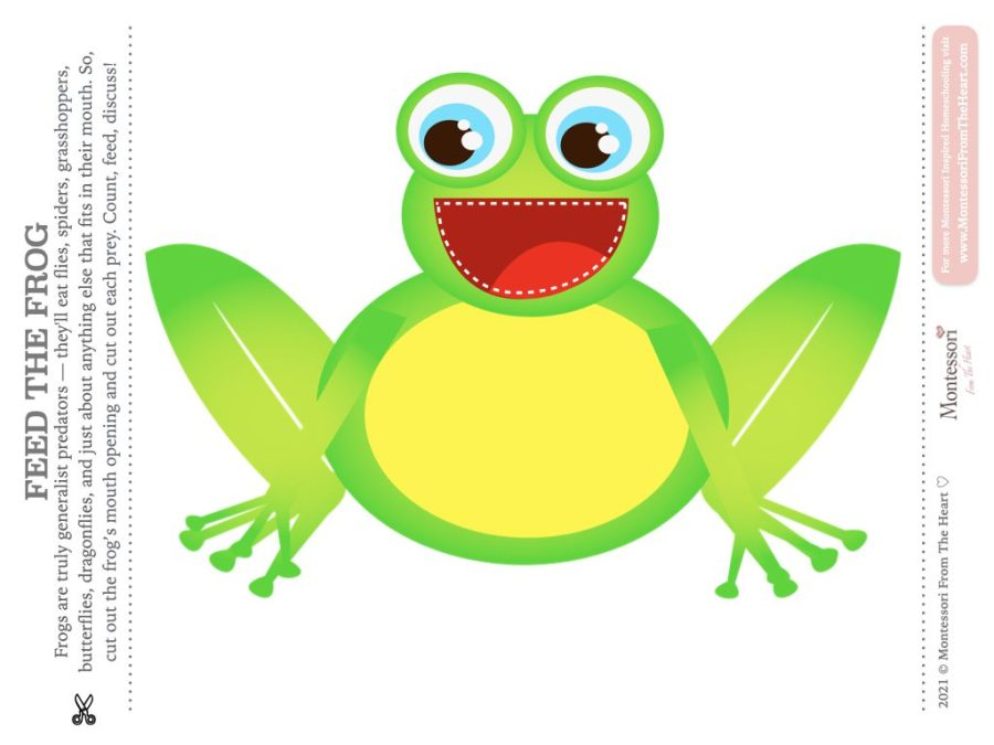 FEED THE FROG Kids
