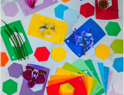 *Nature-Hunt-DIY-Paint-Samples-Scavenger-Color-Hunt--Montessori
