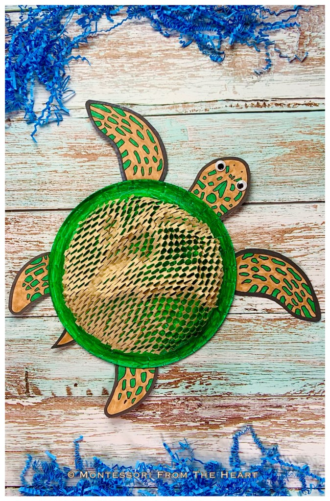 *Turtle Paper Plate Toddler Craft Brown Paper