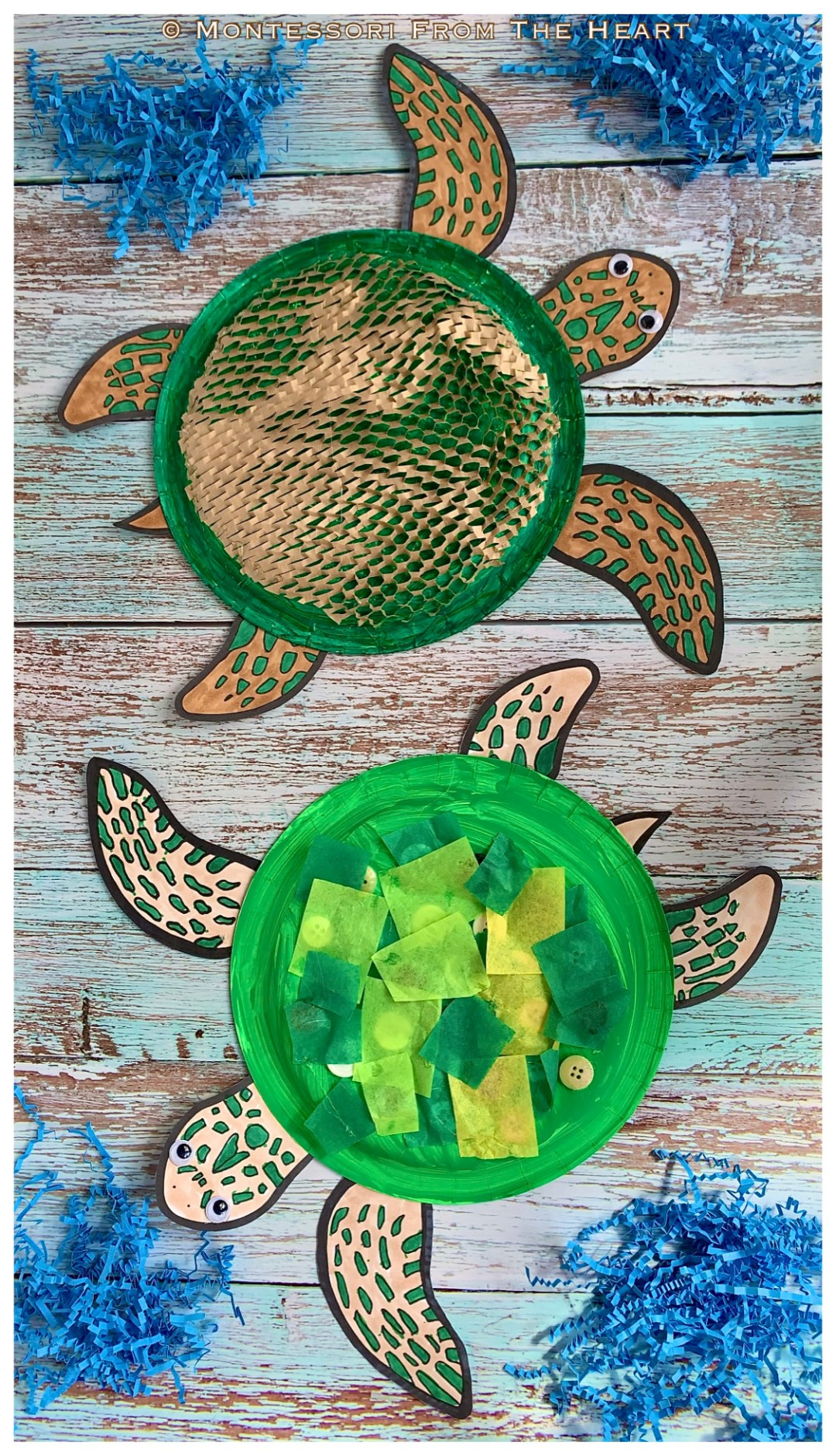 *Turtle Paper Plate Toddler Craft