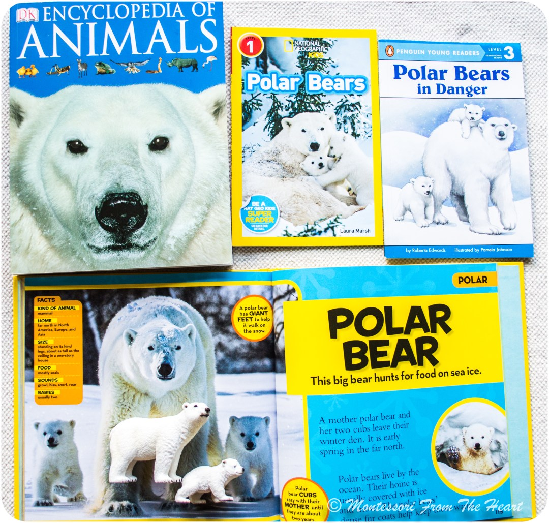 Polar-Bear-Unit-Study-Books-for-kids