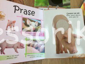 Zvieratá v knihách montessori