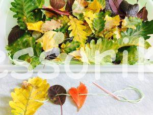 Listy jeseň, tvorenie