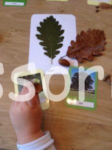 Montessori listy