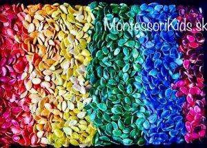 Tekvicové semienka a farby