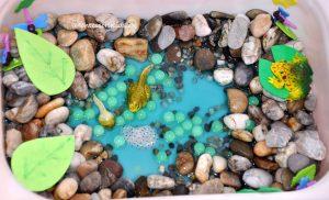 Žaba zmyslová krabica