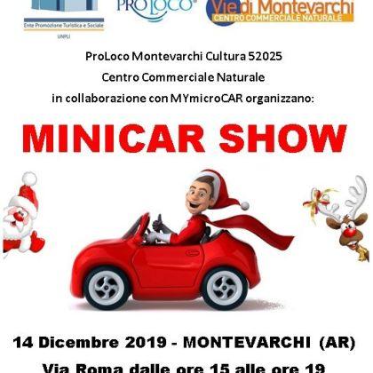 Minicar show