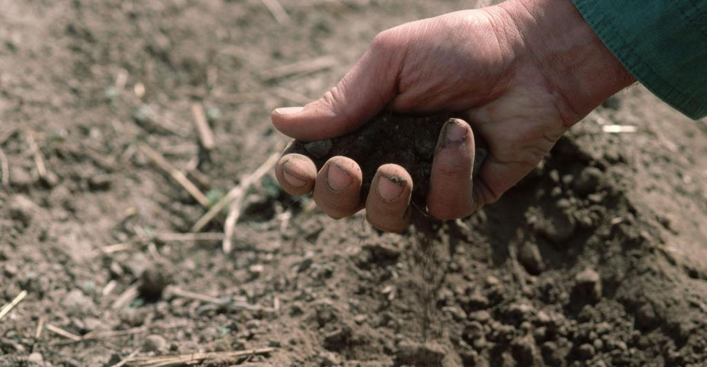 The book, written by a Midwest farmer, shows why soil health is next step in stopping world hunger.