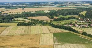 Is Bill Gates your farming neighbor?