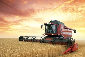 red combine in wheat field