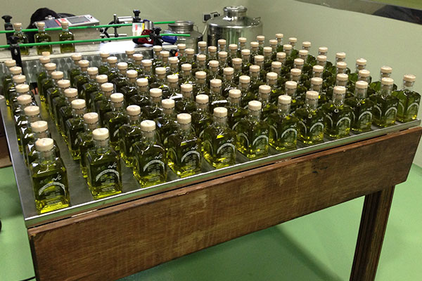 greek-oliveoil