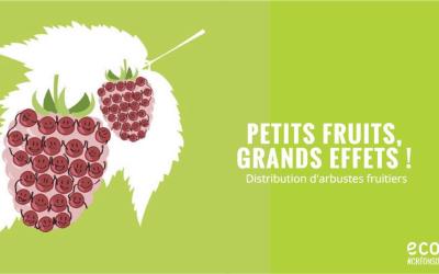 Distribution de petits fruitiers à Montigny-le-Tilleul