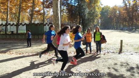 montiliviplus institut montilivi save the children 2014 06