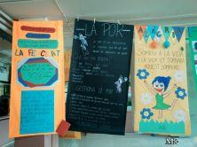 montilivi-plus-institut-girona-jornades-culturals-emocions13