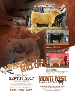 Monti West Black Cattle - 2017 Ad