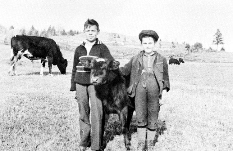 L'agriculture à Chertsey au cours des années 1930
