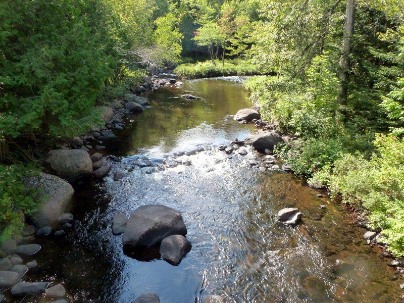 Un bassin avant le pont Grégoire