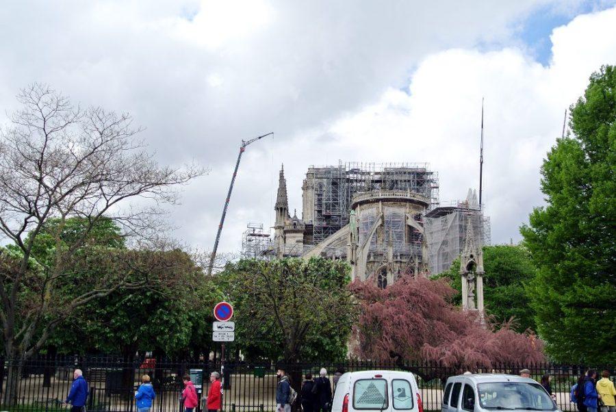 Les grues au-dessus de Notre-Dame