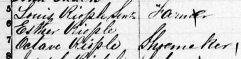 Recensement 1851- Louis et Octave Riopel