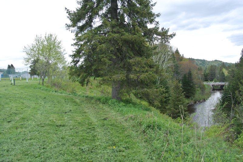 Le Parc Municipal: la rivière Burton